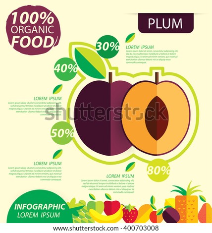Plum. Infographic template. vector illustration.