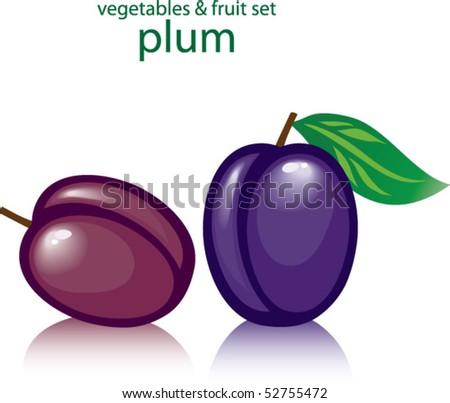 plums - stock vector