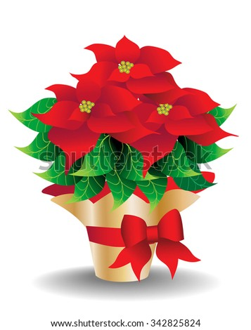 Poinsettia in gold foil wrapped vase with red decorative tissue and red bow - stock vector