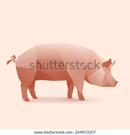 Polygonal Illustration of Pig