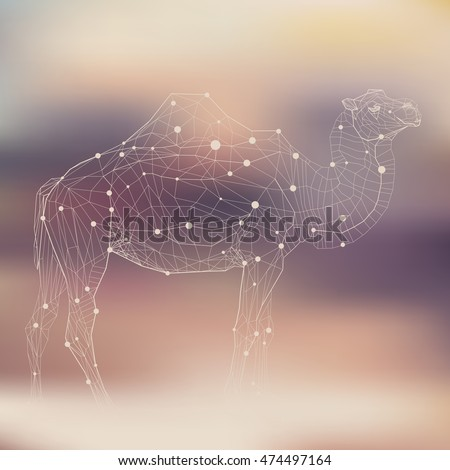 Polygonal low poly illustration of a camel, geometrical triangles linear wire construction. Molecular concept of connection
