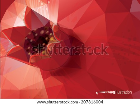 Pomegranate background. Low-poly triangular style illustration - stock vector