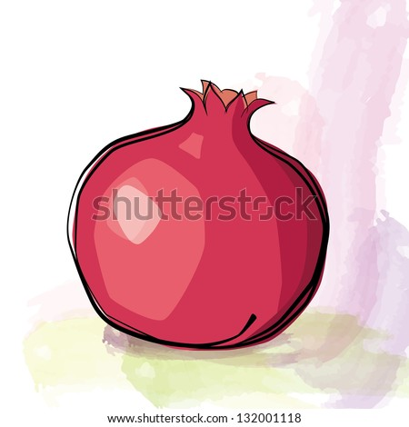 Pomegranate. Vector illustration - stock vector