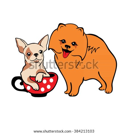 Pomeranian and Chihuahua small dog breeds