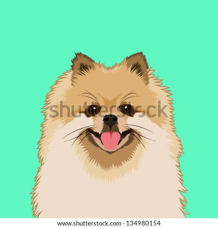 Pomeranian, The buddy dog - stock vector