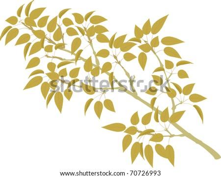 Poplar Branch - stock vector