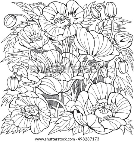 Poppy Flowers Coloring Page Adult Older Stock Vector 498287173 ...