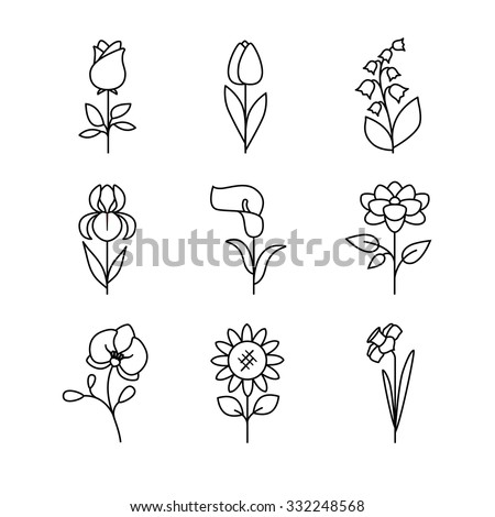 Popular wedding flowers blossoming. Thin line art icons set. Modern black symbols isolated on white for infographics or web use. - stock vector