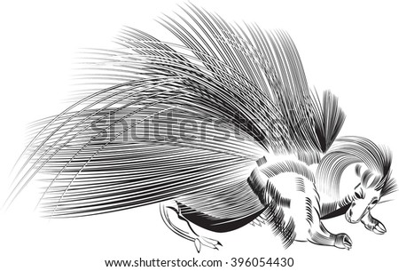 Porcupine, Porcupine,     All elements are in separate layers color can be changed easily.      - stock vector