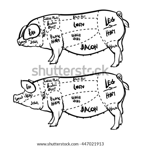 pig diagram stock images  royalty