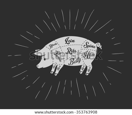 Pork meat cuts in vintage blackboard style - stock vector