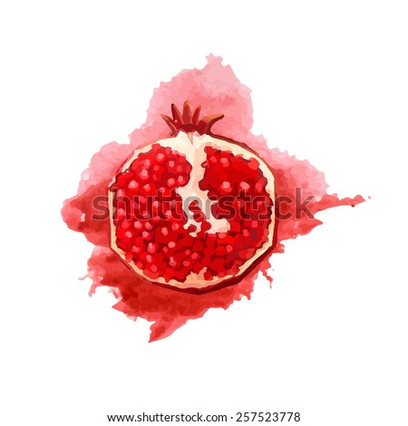 Portion of pomegranate in a watercolor style with red watercolor splashes. Juicy, bright slice. Vector. - stock vector