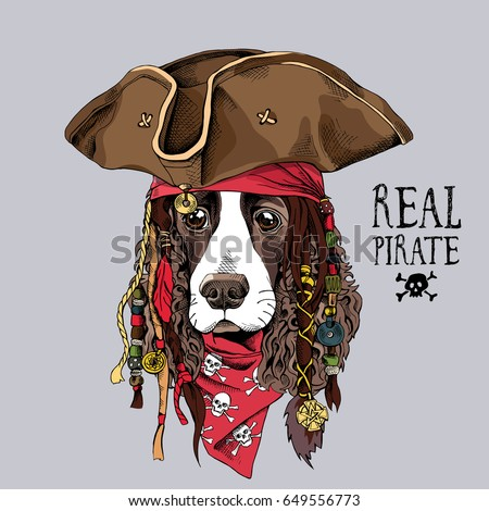 Spaniel Stock Images Royalty Free Images Amp Vectors