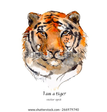portrait of a tiger. watercolor - stock vector