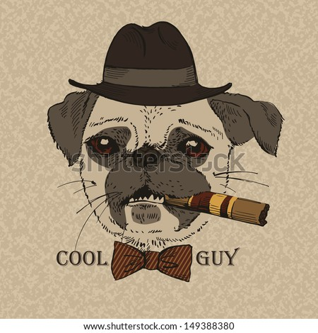 Portrait of Pug-dog with Cigar, Cool Guy, Gangster Look, Vector Illustration - stock vector