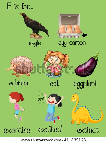Poster Letter E Different Words Illustration Stock Vector