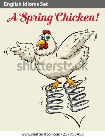Poster with an English idiom showing a spring chicken - stock vector