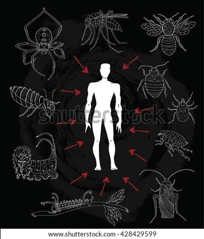 poster human silhouette dangerous insects parasites stock vector, Skeleton