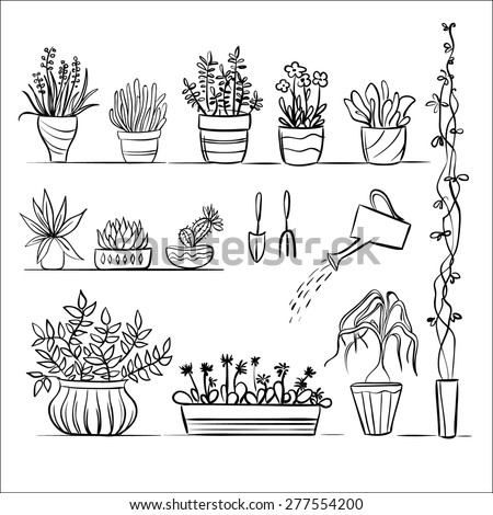 Pot Plants And Tools Sketch Hand Drawing Set Gardening Vector Collection
