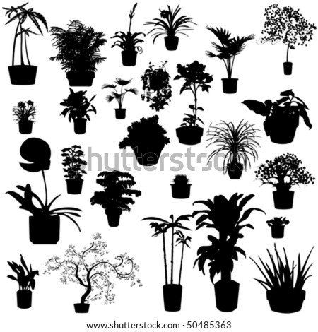Tomato Plant Silhouette Potted Plants Silhouettes