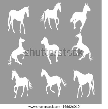prance horse silhouette, vector illustration , horse race, isolated on dark/gray  background, set of white horses silhouette, group of horses silhouette - stock vector