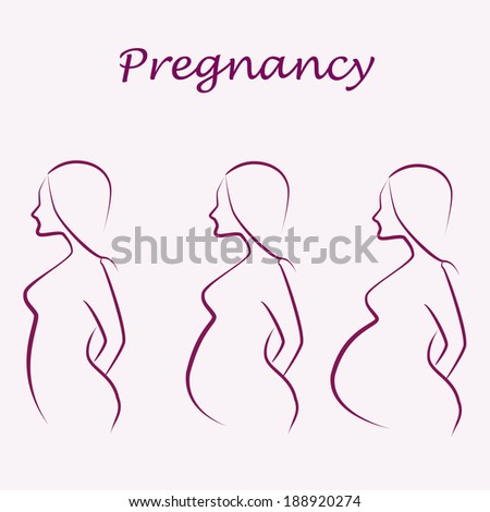 pregnancy illustration
