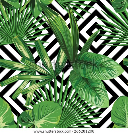 Print summer exotic jungle plant  tropical palm leaves. Pattern, seamless floral vector on the black white geometric background. Nature wallpaper.