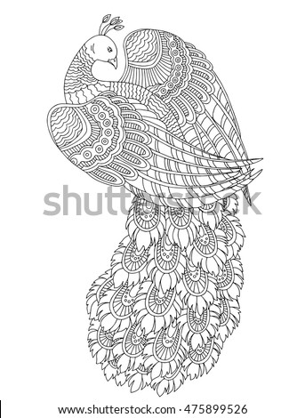 Printable Coloring Page For Adults With Peacock Hand Drawn Vector Illustration