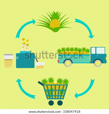 Process of pineapple juice. Pineapple juice production steps. Pineapple tree, harvest, transport, sale at the grocery store, production of pineapple juice at home. In a circular scheme. - stock vector
