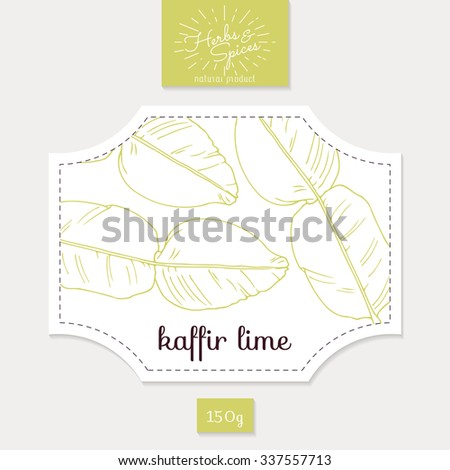 Product sticker with hand drawn kaffir lime leaves. Spicy herbs packaging design. Food label template. Vector illustration