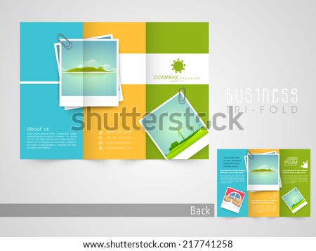 Professional business three fold flyer template, corporate brochure or cover design can be use for publishing, print and presentation. 	 - stock vector