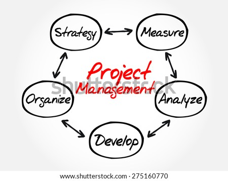 Project Management process mind map, business concept - stock vector