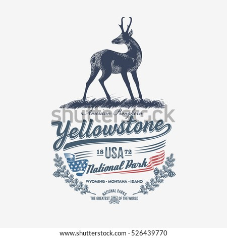 Pronghorn, national Park Yellowstone, illustration, vector, blue color