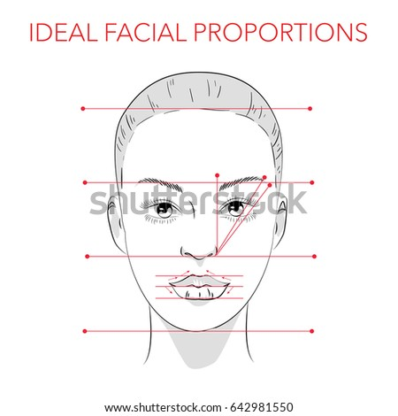 Face Chart Stock Images Royalty Free Images Vectors