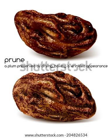 Prunes. Vector illustration.  - stock vector