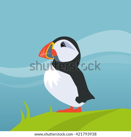 Puffin Bird In Iceland Flat Bright Color Simplified Vector Illustration Realistic Cartoon Style Design