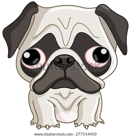 Pug dog - stock vector