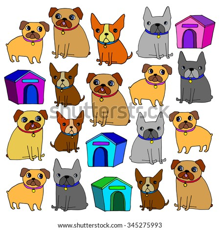 pug dog vector breed illustration purebred animal cartoon graphic