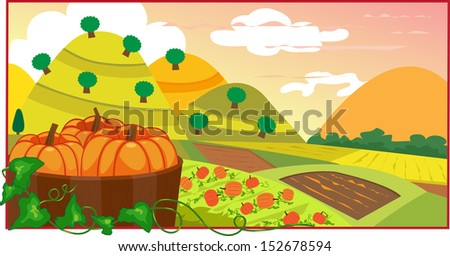Pumpkin Field - An illustration of pumpkins in a barrel, with a view of a cultivated land. Eps10