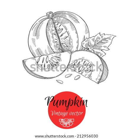 Pumpkin for Halloween, freehand drawing - stock vector