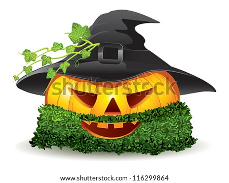 Pumpkin has a beard of moss and wearing a hat - stock vector