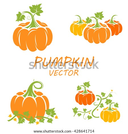 Pumpkin in flat style.  Vegetable from the farm. Organic food. Vector illustration. Pumpkin on white background - stock vector