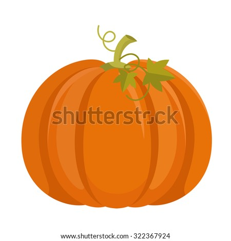 Pumpkin isolated on white background - stock vector