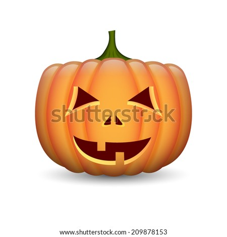 Pumpkin isolated on white. EPS10 vector