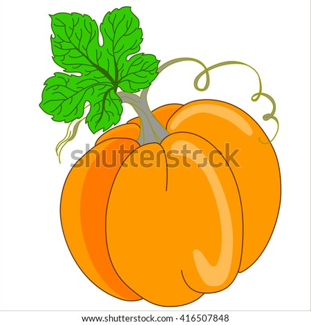 Pumpkin Isolated on White. Flat Design Style. Vector illustration. Cartoon vector Illustration.  - stock vector