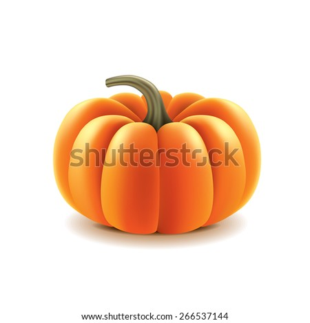 Pumpkin isolated on white photo-realistic vector illustration - stock vector