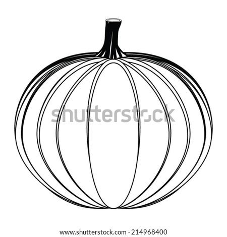 Pumpkin on white background  - stock vector