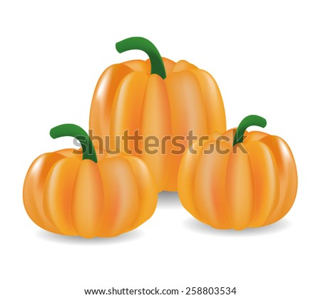 pumpkin orange autumn halloween vegetable food isolated decoration - stock vector
