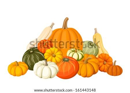 Pumpkins. Vector illustration. - stock vector