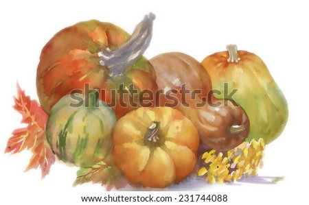 Pumpkins watercolor illustration isolated on white background vector - stock vector